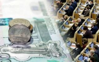 В РФ депутаты предлагают создать государственную надзорную службу