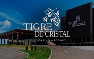 Владелец казино Tigre de Cristal оптимистично оценил будущее своего бизнеса в России