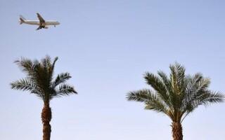 В отрасли ожидают разрешения чартеров на курорты Египта в августе